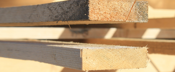 H3 Sawn Pine - Pine Timber Products