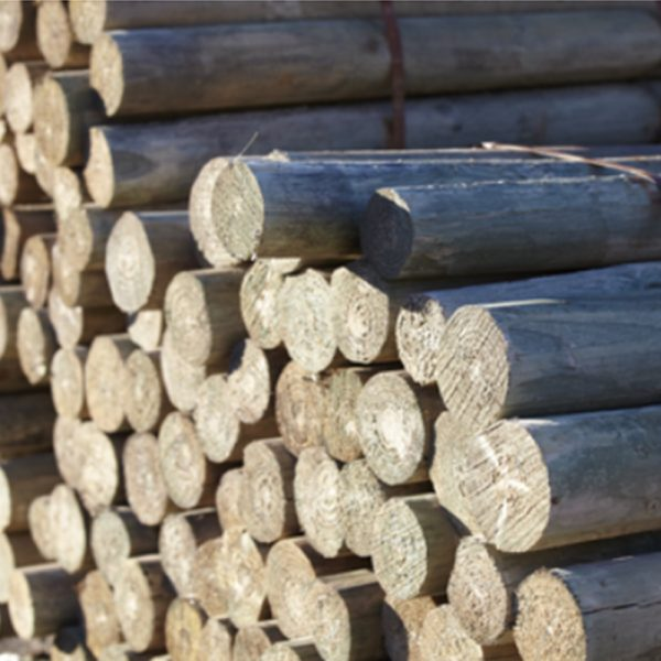 CCA Treated Pine-Tapered - Pine Timber Products