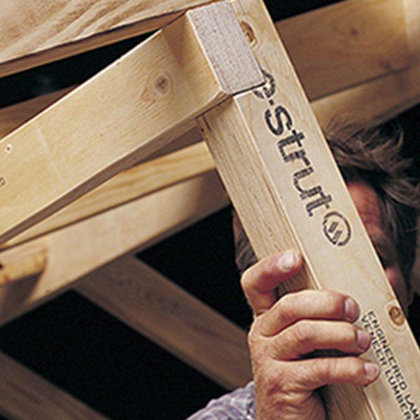 H2S LVL E-Strut - Pine Timber Products